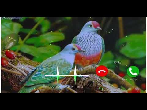 new-bansuri-ringtone-||-new-flute-music-ringtone-||-new-ringtone-2020-||-hindi-ringtone