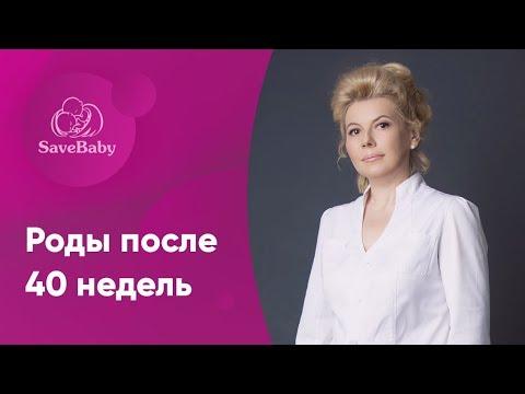Роды после 40 недель. Елена Никологорская. Акушер-гинеколог. СПб