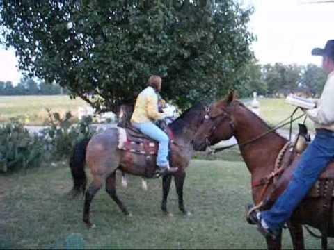 June 21, 2008 Redneck Wedding.wmv