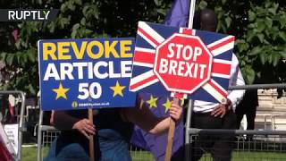 Anti-Brexit protesters take aim at Boris Johnson