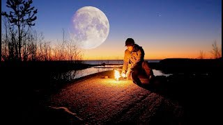 Magical Night under the Moon
