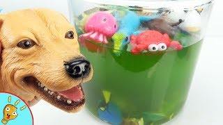 Learn Animals in Green Bubble Water with Toys by Squishee Nugget