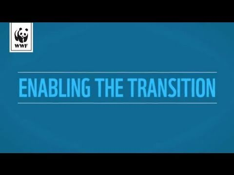 Enabling the Transition - Climate Innovation Systems