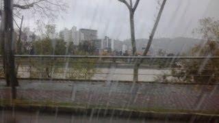 Cuidados básicos ao dirigir na chuva!