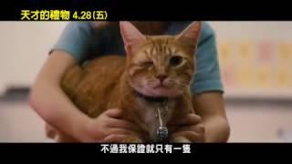 【天才的禮物】電影片段 – 獨眼貓
