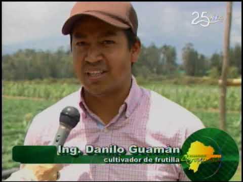 Ecuador Agropecuario 21-09-2018