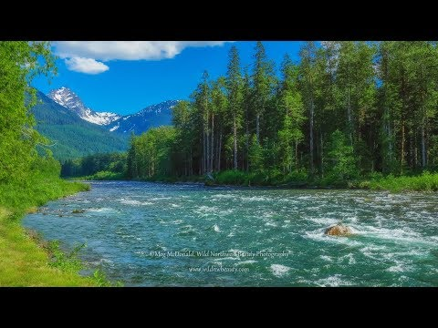 Stunning Sauk River Falls and Rapids: Cascade Mountains (HD)
