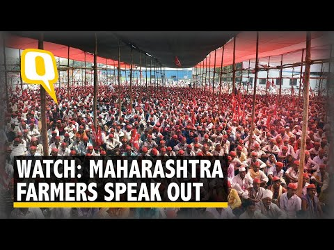 Watch: Protesting Farmers Talk to The Quint at Mumbai's Azad Maidan