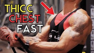 MY TOP 4 CHEST EXERCISES
