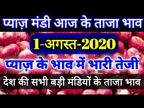 2-अगस्त-2020-प्याज-मंडी-ताजा-भाव,-प्याज-भाव-में-भारी-तेजी,onion-bhav-today-payaj-bhav,mandi-bhav