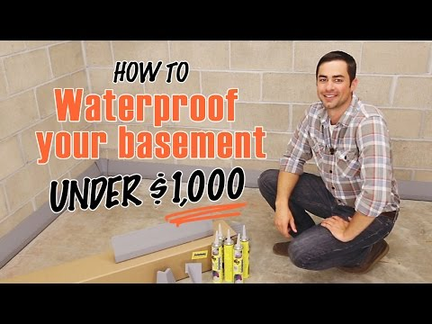 How to Waterproof a Basement | DIY SquidGee Dry System