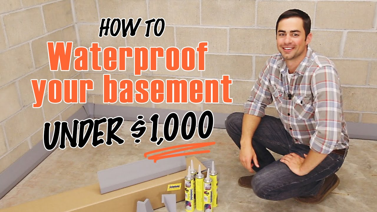 How To Waterproof A Basement Diy Squidgee Dry System