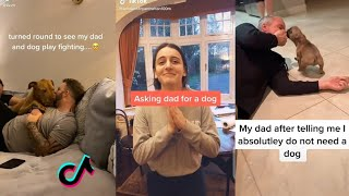 DADS AND THE DOGS THEY DID NOT WANT TIKTOK