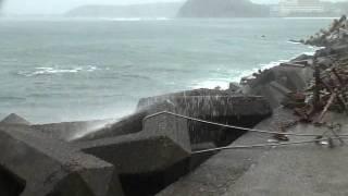 台風2号接近中 白浜町 湯崎漁港
