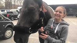 Denise Ruth startet bei den Amadeus Horse Indoors