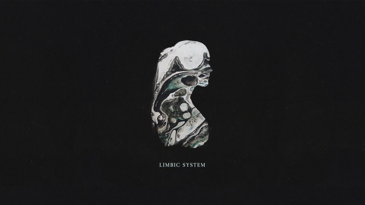 Zealyn - Limbic System (feat. JMR) - Official Audio - YouTube Limbic System Add
