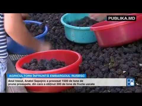 Agricultorii înfruntă embargoul rusesc. Un fermier din Călăraşi exportă prune uscate în Austria