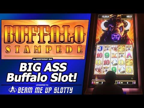 Buffalo stampede slot machine jackpot