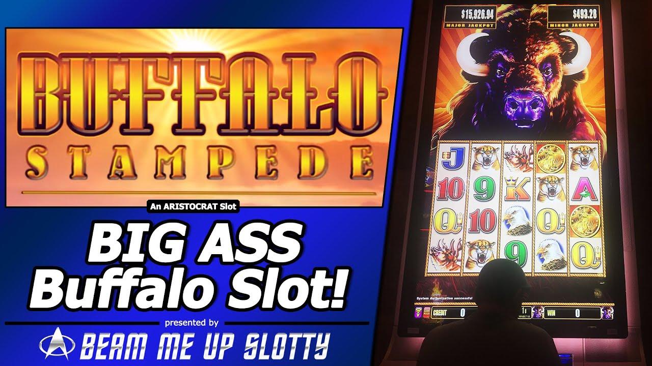 "big ass buffalo stampede slot - super big win in new ""behemoth"