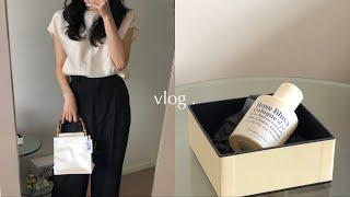 vlog. hai 가방 | 로에베 로퍼 | 네타포르테 …