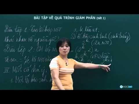 Sinh Học   Bài tập về quá trình giảm phân  tiết 1 )