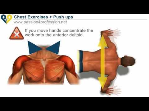 GYM – Tập cơ ngực bằng hít đất
