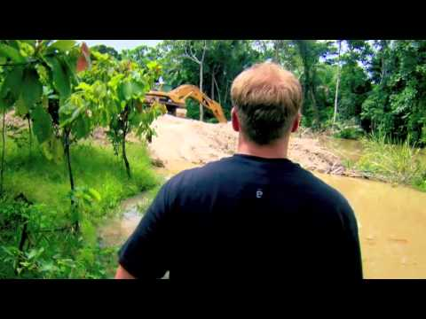 Jungle Gold 2