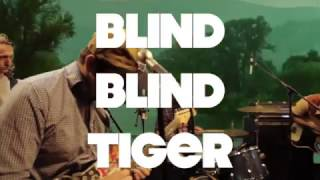 "Wild Wing ""Sound The Alarm""  Live at the BlindBlindTiger Speakeasy Video"