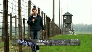 TODD SEGAL -  Majdanek Report
