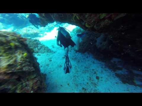 Columbia Reef Dive 2