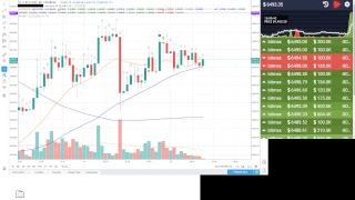 Bitcoin Trading (Bitmex) with Free Signals 24/7