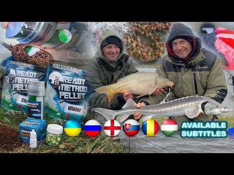 Döme Gábor - Hideg vízi pontyhorgászat feederrel 22. rész -