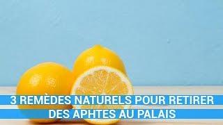 3 REMÈDES NATURELS POUR RETIRER DES APHTES AU PALAIS-remede naturel c0ns3ils