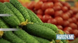 видео: 4 истории выдающегося бизнеса: Даниловский рынок, StrEAT, Честная ферма, Сегодня Мидии
