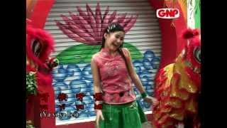 向大家拜年 (Xiang Da Jia Bai Nian) - 劉莉莉 (Lidya Lau) CNY