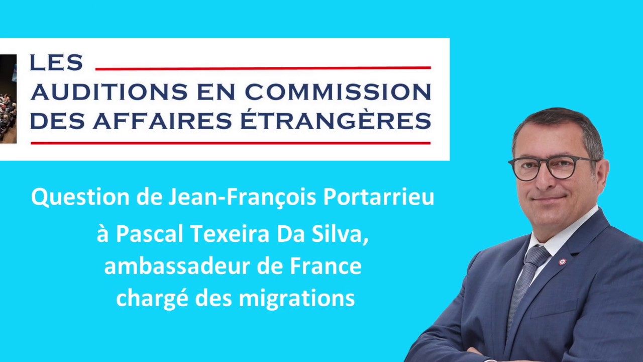 JEAN-FRANCOIS PORTARRIEU - CAE - QUESTION AMBASSADEUR MR TEXEIRA DA SILVA - 18122018