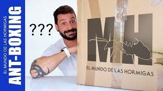 Nuevo Hormiguero para las Hormigas Alpha y SORPRESÓN! | ANT-BOXING