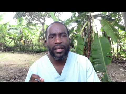 The Natural Alternative Episode 3 (The Most Powerful Natural Remedy in The World prt. 1 of 2