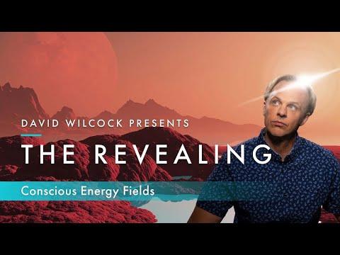 David Wilcock: The Revealing -- Conscious Energy Fields