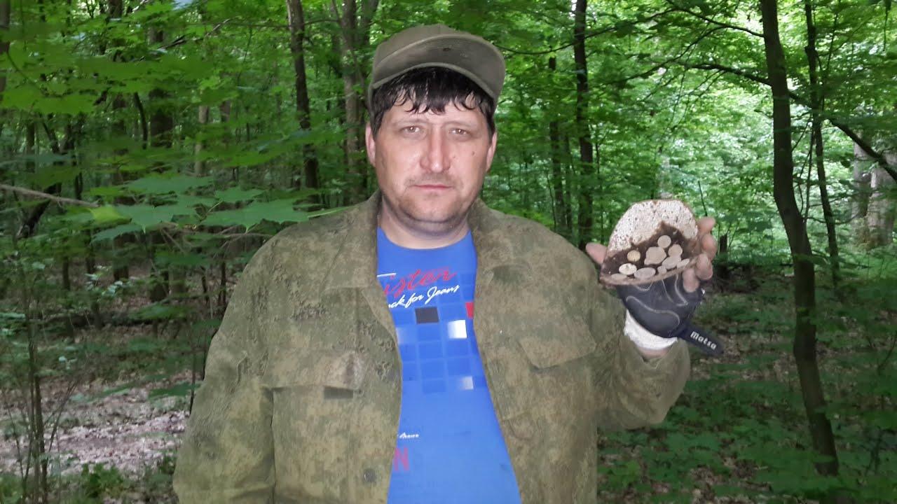 сети гуляет коп на лесных хуторах фото людей