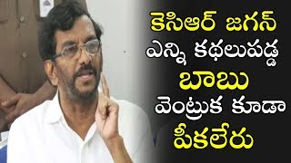 AP TDP Minister Somireddy About Telangana CM KCR and YSRCP Chief YS Jagan   Political Qube