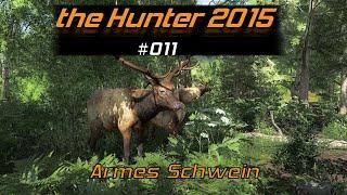 theHunter 2015 #011 | Armes Schwein | Let