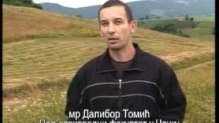 Prilog o organskom  uzgoju heljde u selu Ploce
