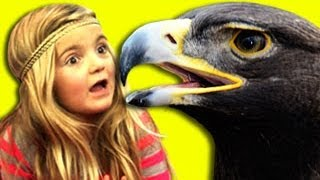 Repeat youtube video Kids React to Eagle Snatches Kid