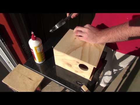 How To: Build a Budgie Nest Box | BirdSpyAus