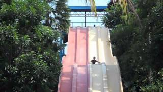 Bermain Air di Ocean Park BSD