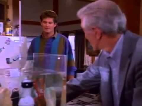 Baywatch Season 3 Episode 12 A Matter Of Life And Death