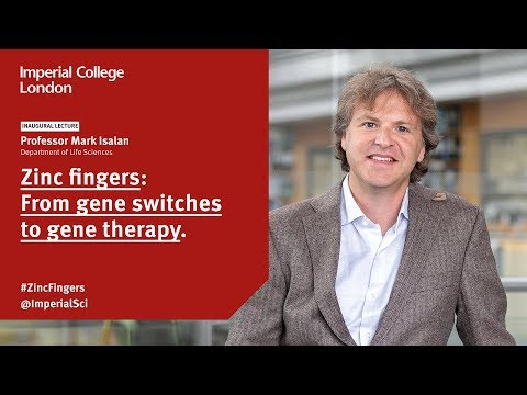 Zinc Fingers: From Gene Switches To Gene Therapy