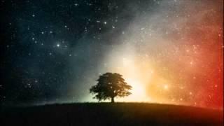 William Orbit - Adagio For Strings (Ferry Corsten Mix)
