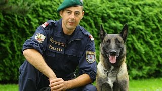 Planet Wissen - Tierische Beamte, Polizeihunde